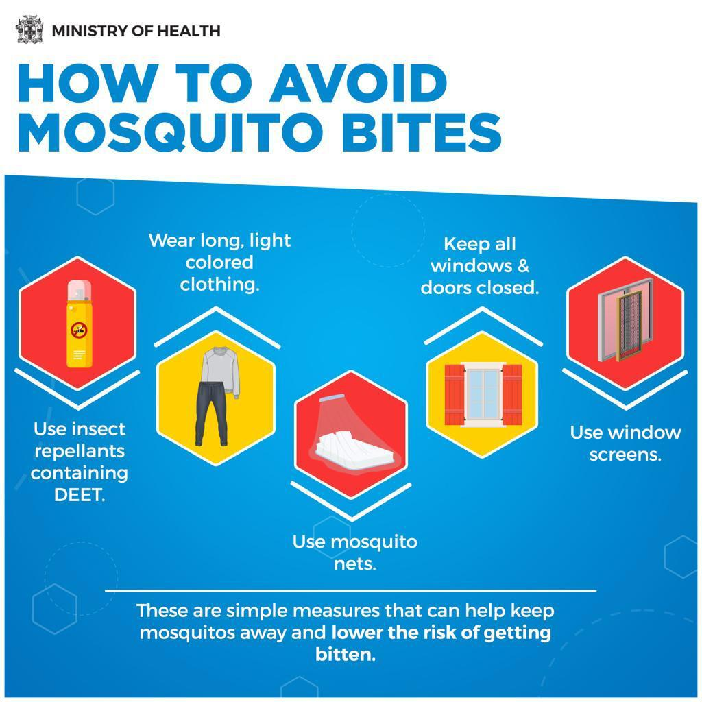 Preventing Dengue